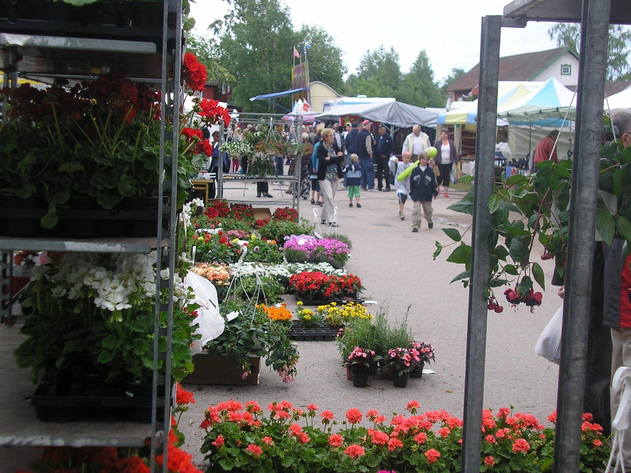 Guldmarknaden i Dala-Järna