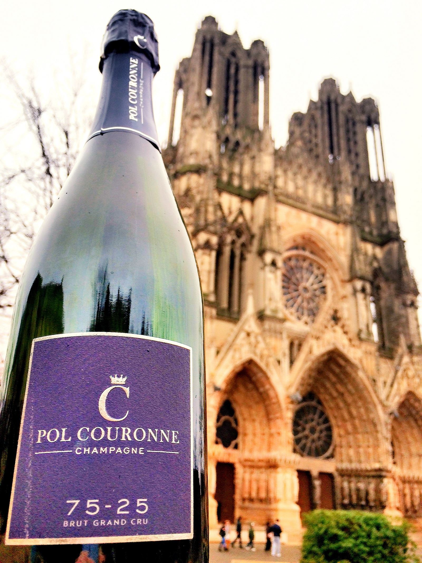 Pol Couronne champagne discovery day
