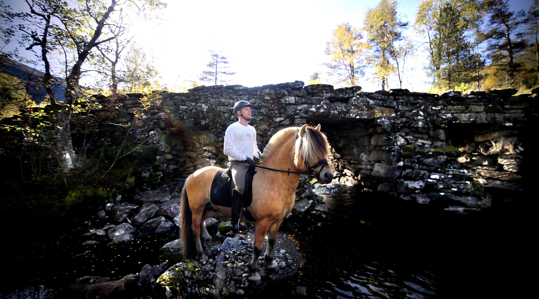 Horseback riding to Harpefossen | Norwegian Fjord Horse Centre