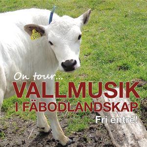 Vallmusik i Fäbodlandskap - Finnsåsen, Borlänge