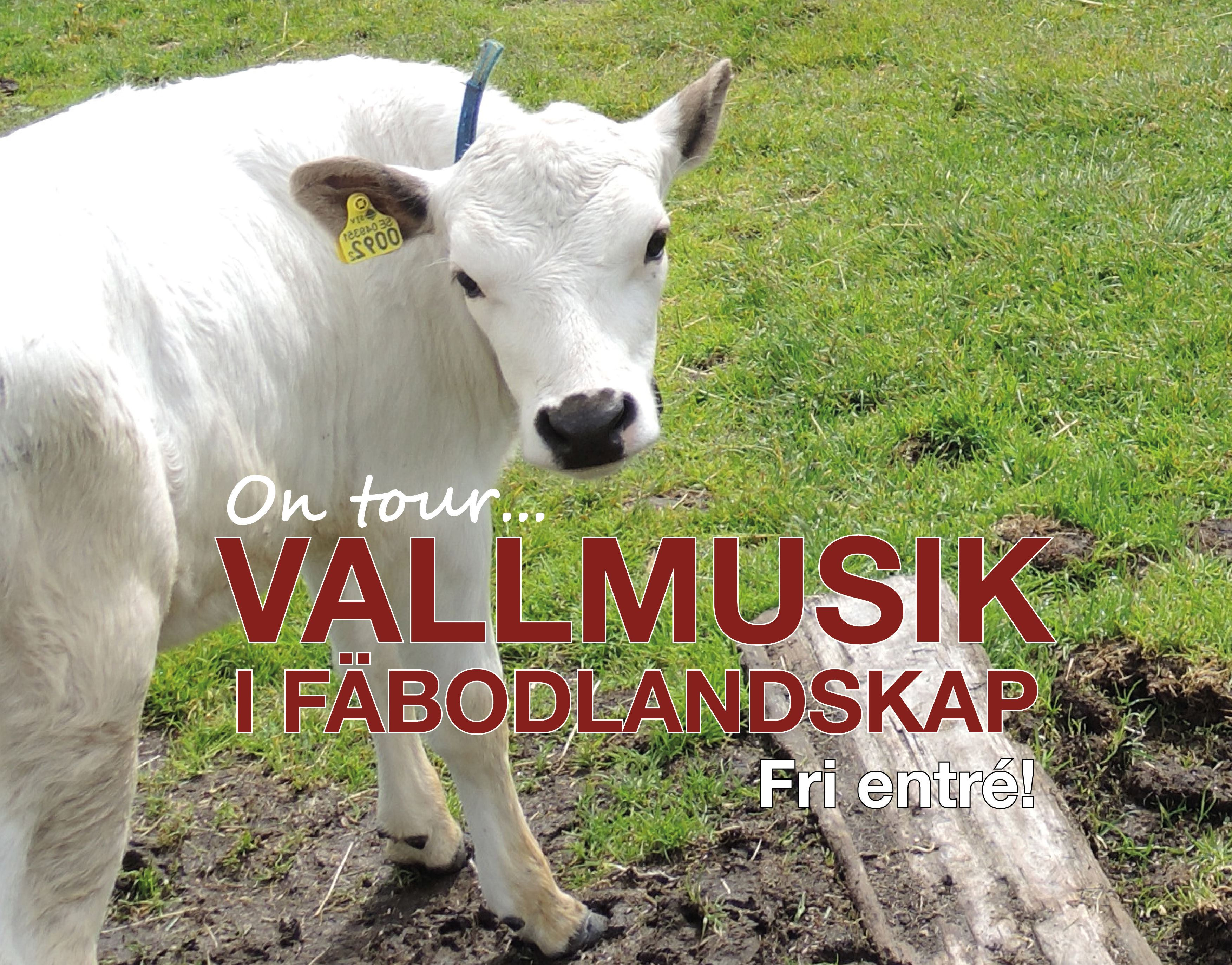 Vallmusik i Fäbolandskap - Skallskog, Leksand