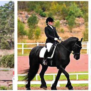 Hästsport: Hoppning