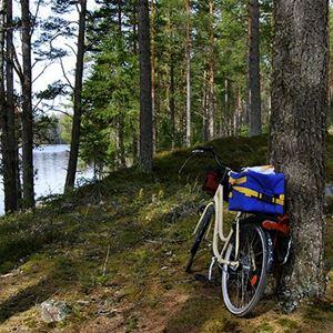 Limestone Bike Tour