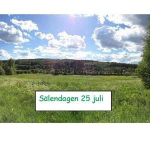 Västerdalsveckan V30 -  Sälendagen 25 juli