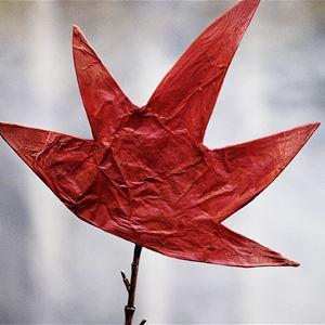 Det röda trädet