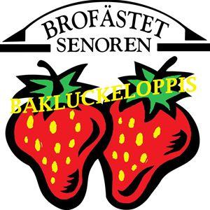 Bakluckeloppis - Brofästet Senoren