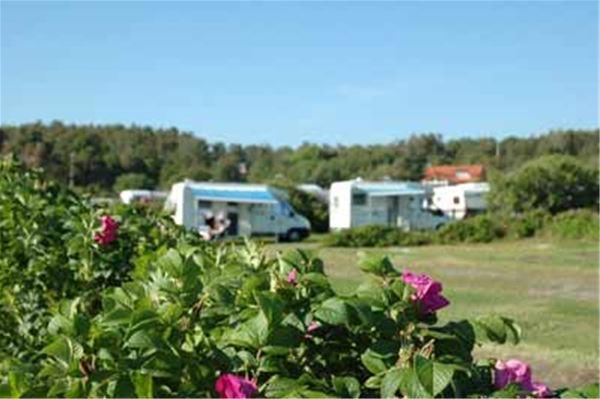 Ugglarp.nu / Camping