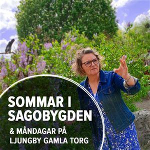 Sommar i Sagobygden: Det hände sig en gång