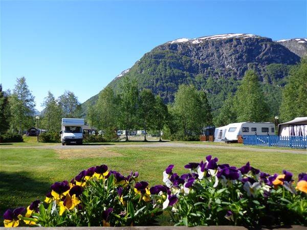 Byrkjelo Camping