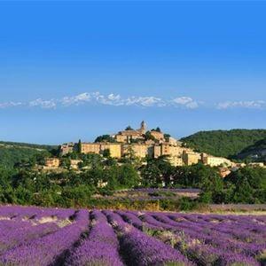 Nature Tour Journée - Provence Cab