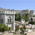 Tour Express: A voir absolument Avignon / Villeneuve Lez Avignon - Provence Cab