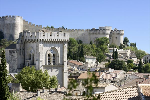 Tour Express: The must see Avignon / Villeneuve Lez Avignon - Provence Cab