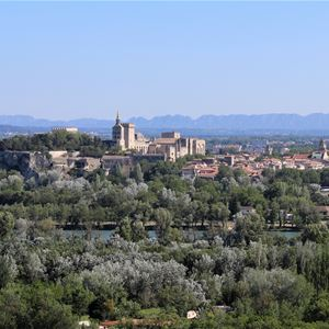 Tour Express: The must see Avignon / Villeneuve Lez Avignon - Provence Cab