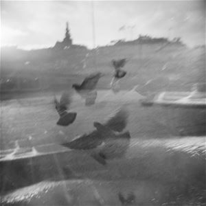 Lena Källberg, Workshop #analogfoto och mörkrumsteknik