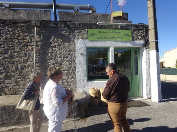 Gourmet break in Pic Saint-Loup region with Belle Tourisme