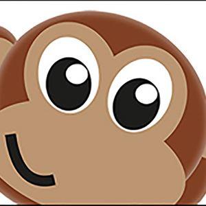 En bild på en apa