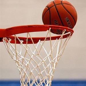 Basket med Växjö Ravens