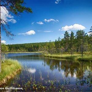 Hans-Göran Gulliksson, Naturcamping Fettjorna vid Jämtgavelns naturreservat