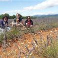 Discovery tour of the Luberon villages in Provence with Belle Tourisme