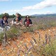 Circuit de découverte des villages du Luberon en Provence avec Belle Tourisme