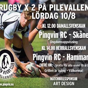 Christer Thorell, Rugby Herrallsvenskan Pingvin - Hammarby