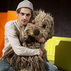 Jonas Jörneberg, Vill ha Hund
