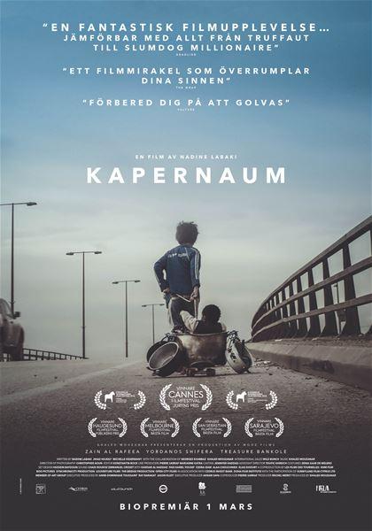 Biofilm - Kapernaum