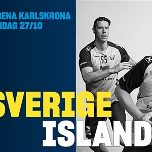 International Handball Championship: Sweden-Iceland
