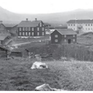 © Copy: Arkivet i Östersund, Ljusnedals bruk-stendamm, slammer, folk och fä