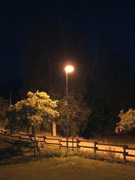 Murder mystery evening at ''Askunga Dovvilt''
