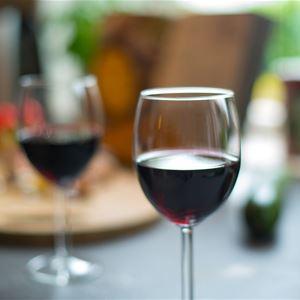 Vinprovning röda viner från Piemonte, Italien