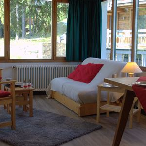 2 rooms 4/5 people / LES ECRINS 6 (Mountain)
