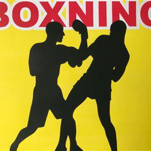 © copy: BK Ängeln, Boxing - international competition