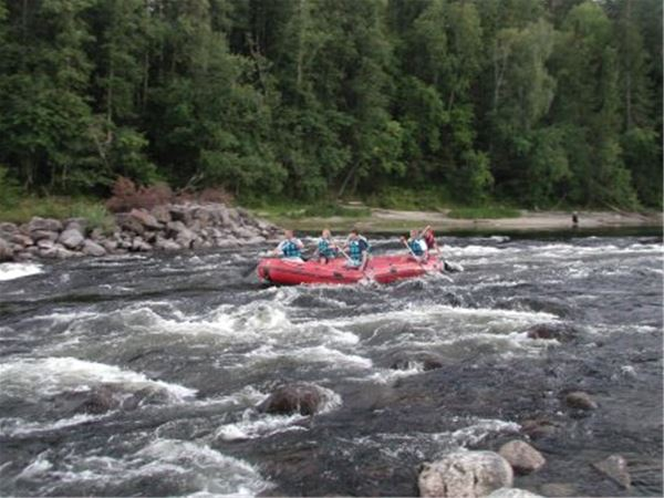 Rafting in Ljungan
