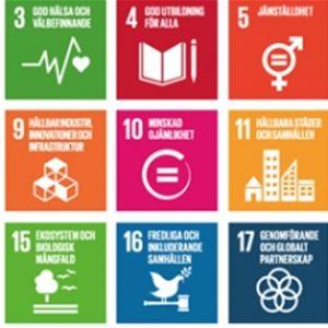 Hållbara oktober - Hållbar tvättstuga