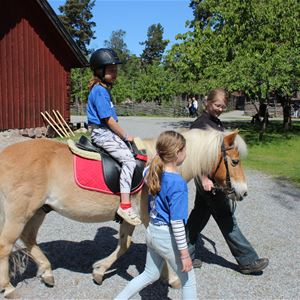 Ponnyridning på Torekällberget