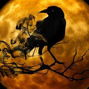 Kvällsöppet med skräckfilm och popcorn