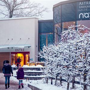 Julmarknad på Astrid Lindgrens Näs