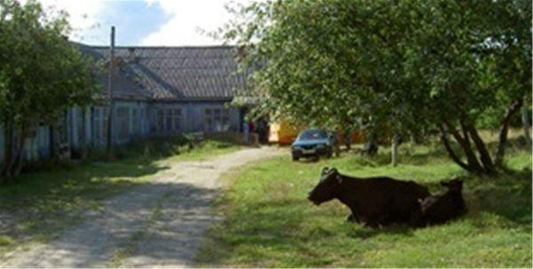 Invigning av utställningen: Vänortsföreningen Malå-Medvezhegorsk 20 år