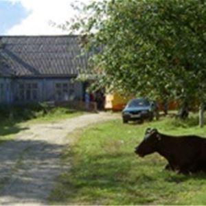 Utställning: Vänortsföreningen Malå-Medvezhegorsk 20 år