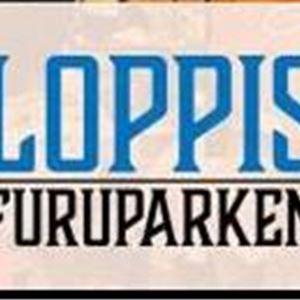 © ¨Copy: Loppis Furuparken, Flee market at Furuparken
