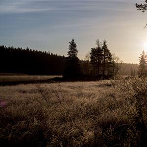 www.ricke.se,  © Malå kommun, Malå Missionskyrka, en del av Equmeniakyrkan