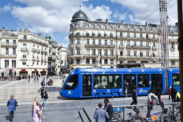 French guided tour for hearing disabled people - Public with hearing disabilities.