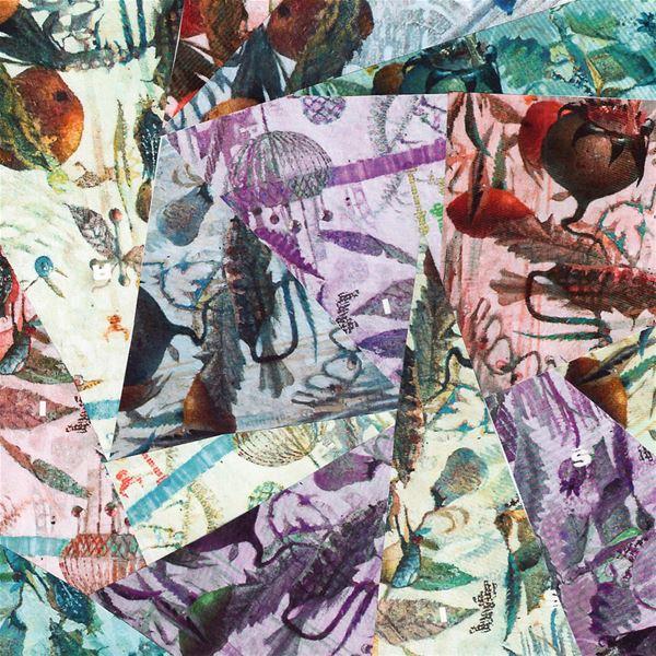 ŠIROM och Catterfly + vernissage: Ann Catrin Olsson
