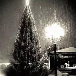 Sundsvalls Julskyltning