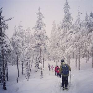 Lotta Backlund, Green Owl Travel - Snöskovandring