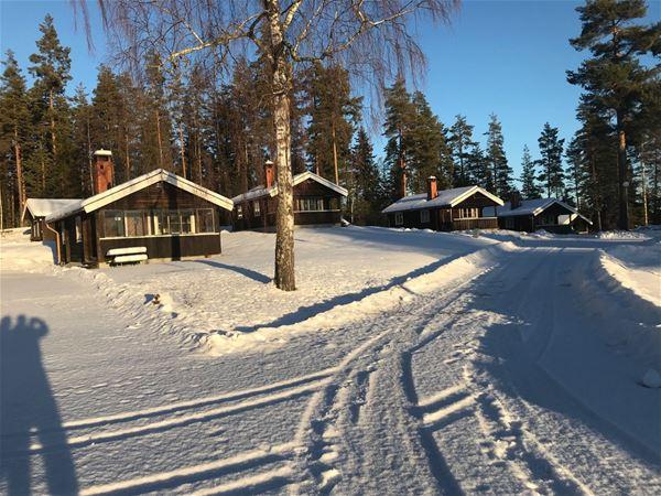 Siljansnäs Stugby - Björkberget