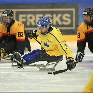 Foto: Para hockey,  © Copy: Para hockey, Canceled - Para Ice Hockey European Championships