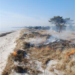 Föredrag - Naturskyddsföreningen Trelleborg