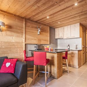 VANOISE 566 / APARTMENT 2 ROOMS CABIN 4 PERSONS - 4 GOLD SNOWFLAKES - ADA